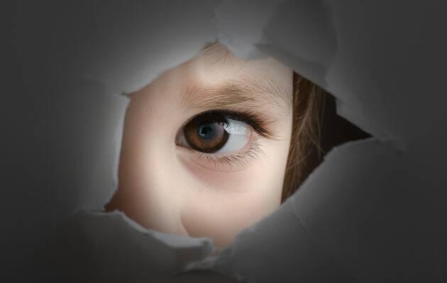 «Праздничные» итоги политики государства по защите ребенка