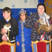 Funny Kitties Bring Children Lots of Joy!