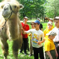 Children with Special Needs Enjoy a Nice Walk in the Dubovaya Roschsha Park
